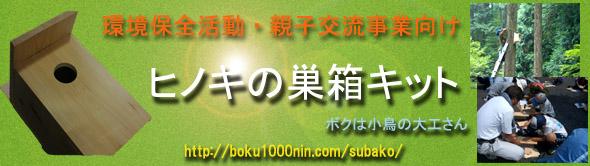 subako banner_590-166.jpg