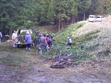 左義長に使う木を集める作業