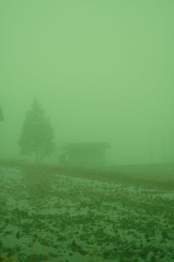 緑のガスに覆われて