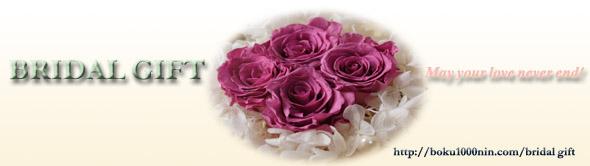 bridal gift_banner_590-166.jpg