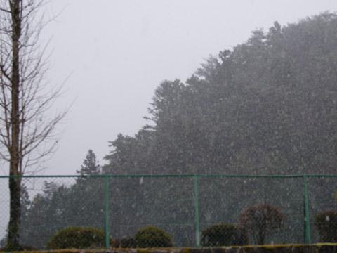 初雪20101209